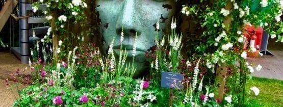Chelsea Flower Show 2020 Dates