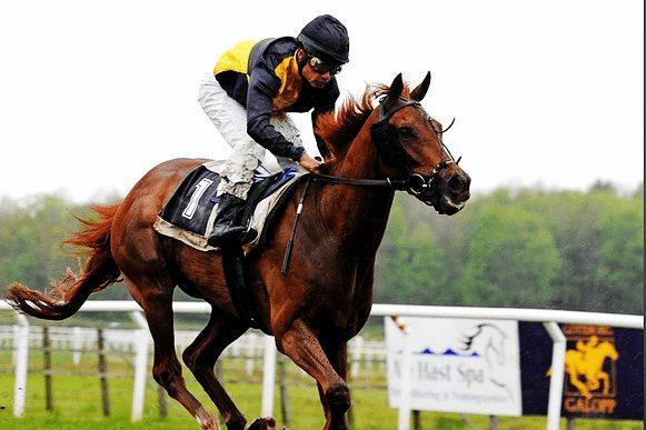 Horse Racing Tickets