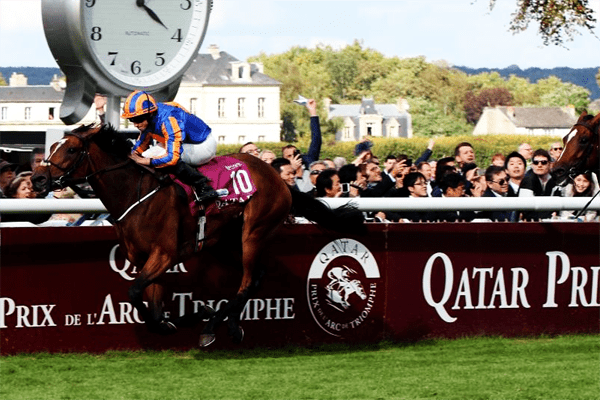 Prix de larc de triomphe 2021 betting online football betting sites tips for selling
